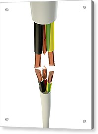 Electrical Cable Cut Acrylic Print by Allan Swart