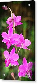 Elegance In Nature Acrylic Print by Sue Melvin