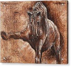 Elegance Of Joy Acrylic Print by Paula Collewijn -  The Art of Horses