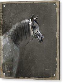 Elegance  Acrylic Print by Dorota Kudyba
