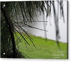 Acrylic Print featuring the photograph Elements by Greg Patzer