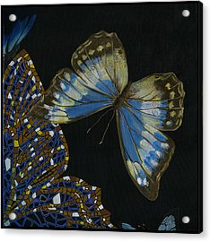 Elena Yakubovich - Butterfly 2x2 Top Right Corner Acrylic Print
