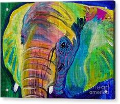 Elephant - Pachyderm Acrylic Print by Alicia VanNoy Call