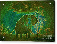Elephant Abstract Acrylic Print