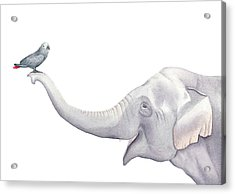 Acrylic Print featuring the painting Elephant And Bird Watercolor by Taylan Apukovska
