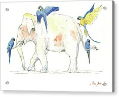 Elephant And Parrots Acrylic Print