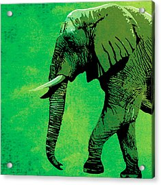 Elephant Animal Decorative Green Wall Poster 4 Acrylic Print