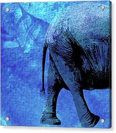 Elephant Animal Decorative Wall Poster 9 Acrylic Print