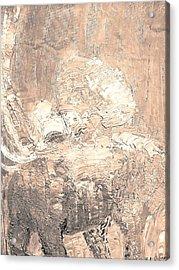 Elephant Acrylic Print by BJ Abrams