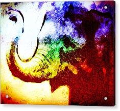 Elephant Energy Acrylic Print