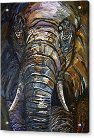 Elephant Faces Of Nature Series Acrylic Print