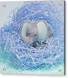 Elephant For Charity Blue Acrylic Print