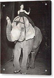 Acrylic Print featuring the photograph Elephant Girl by Judyann Matthews