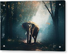 Elephant In The Mist - Painting Acrylic Print