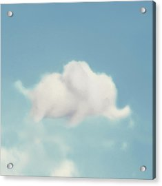 Elephant In The Sky - Square Format Acrylic Print by Amy Tyler