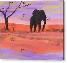 Elephant Spotlight Acrylic Print