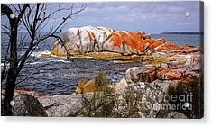 Elephant Rock - Bay Of Fires Acrylic Print by Lexa Harpell