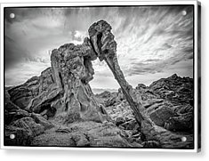 Elephant Rock, Valley Of Fire Acrylic Print