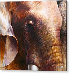 Elephant Empathy Acrylic Print