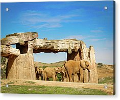 Acrylic Print featuring the photograph Elephants by Alison Frank