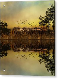 Elephants At Sunset Acrylic Print