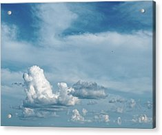 Acrylic Print featuring the photograph Elevation by Tom Druin