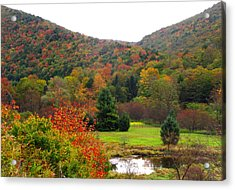Elk Country Pennsylvania Acrylic Print