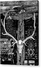 Elk Skull In Black And White Acrylic Print