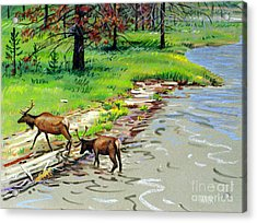 Elks Crossing Acrylic Print by Donald Maier