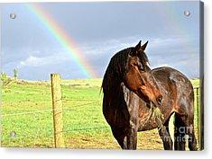 Ella And The Rainbows Acrylic Print