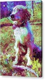 Ella Acrylic Print by Rora