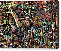 Elusive Acrylic Print