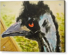 Elvis The Emu Acrylic Print
