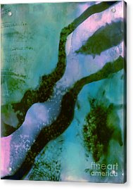 Em18 Acrylic Print