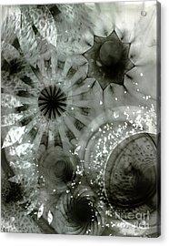 Em41 Acrylic Print