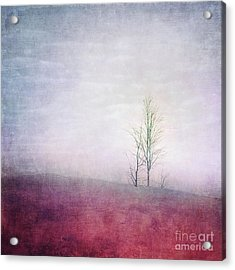Embracing Solitude Acrylic Print by Priska Wettstein