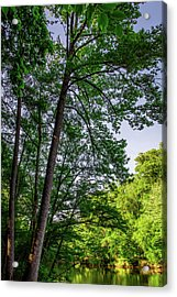 Emerald Afternoon Acrylic Print