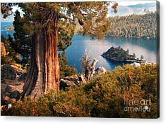 Emerald Bay Overlook Acrylic Print by Norman  Andrus