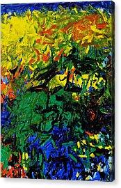 Emerald Bay Acrylic Print by Wayne Salvatore