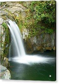 Emerald Falls Acrylic Print by Marty Koch
