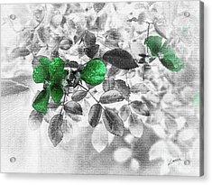 Emerald Green Of Ireland Acrylic Print