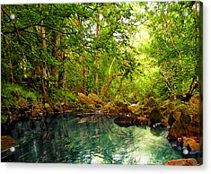 Emerald Lake Acrylic Print by Svetlana Sewell