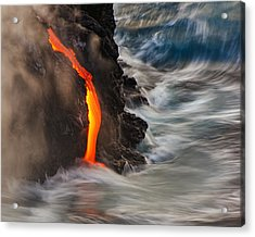 Emergent Acrylic Print by Andrew J. Lee
