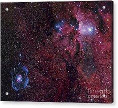 Emission Nebula Ngc 6188 Star Formation Acrylic Print