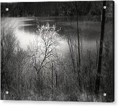 Emlenton Acrylic Print