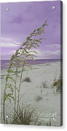 Emma Kate's Purple Beach Acrylic Print