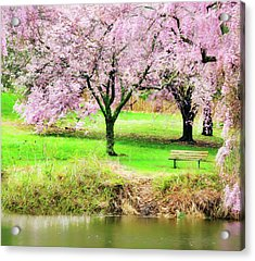 Acrylic Print featuring the photograph Empty Bench Surrounded By Spring Colors by Gary Slawsky