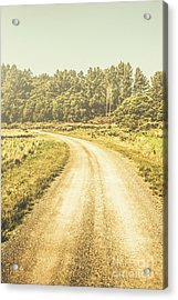 Empty Curved Gravel Road In Tasmania, Australia Acrylic Print by Jorgo Photography - Wall Art Gallery