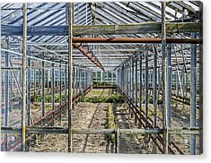 Empty Greenhouse Acrylic Print