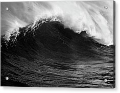 Acrylic Print featuring the photograph Empty Jaws Black And White by Brad Scott